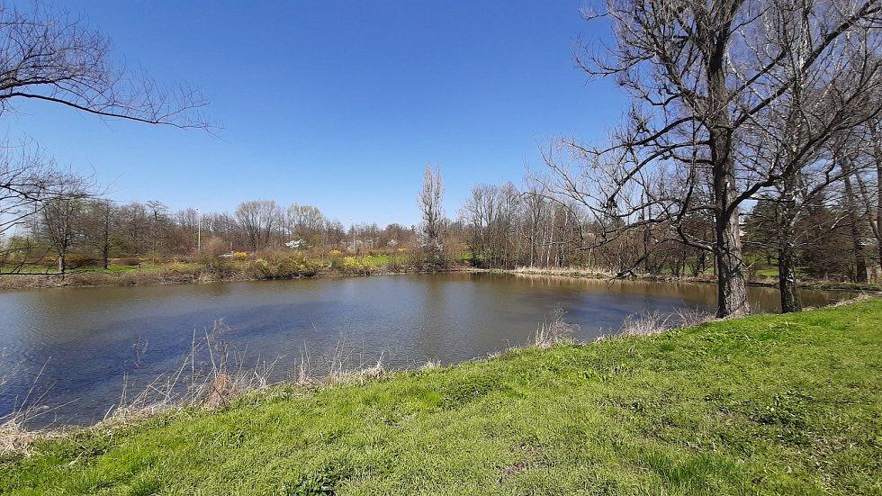 Orlová-Poruba. Rybník u bývalého fotbalového hřiště Slezanu