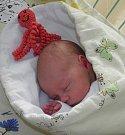 Berenika Julie Kančiová se narodila 13. listopadu paní Anně Kančiové z Orlové. Po porodu dítě vážilo 2980 g a měřila 49 cm.