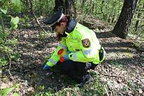 Stříkačky nacházeli havířovští strážníci na patnácti různých místech ve městě.