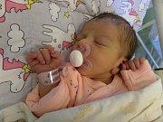 Malá Katie Toráčová z Českého Těšína se narodila 23. dubna v Nemocnici Třinec. Po narození holčička vážila 2290 g a měřila 44 cm.