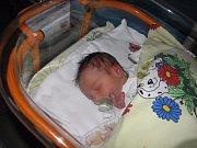 Natalia Holingrová se narodila 29. listopadu mamince Veronice Terbrové z Karviné. Když přišla holčička na svět, vážila 2660 g a měřila 48 cm.