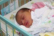 Mamince Silvii Šandorové z Karviné se 8. března narodila dcera Alenka. Porodní váha holčičky byla 2930 g a míra 46 cm.