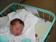 Adámek Wenglorz se narodil 3. února paní Denise Kotlárové z Orlové. Porodní váha miminka byla 3620 g a míra 49 cm.