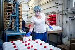 Výroba dezinfekce ve společnosti Bochemie Bohumín, 1. dubna 2020. Společnost také vyrábí dezinfekci Anti-COVID.