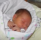 Vojtíšek Křípal se narodil 10. listopadu paní Štěpánce Křípalové Ďurinové z Těrlicka. Po porodu chlapeček vážil 4000 g a měřil 52 cm.