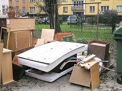 Tak to někdy vypadá kolem českotěšínských kontejnerů. Nynější akce je tak prevencí i proti těmto jevům.