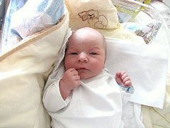 David Pullmann, 4. července 2012, Havířov, váha: 3,71 kg, míra: 53 cm
