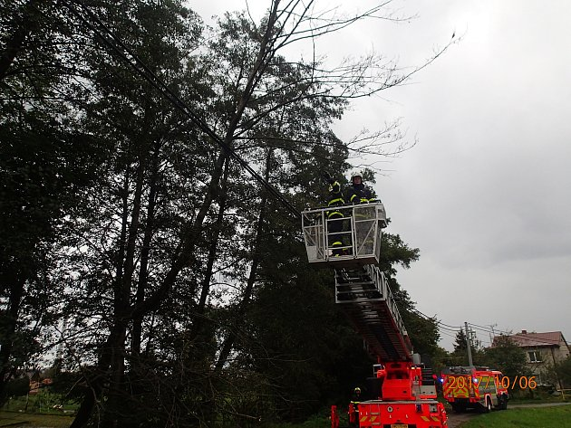 Hasiči museli v pátek dopoledne odstraňovat suchý strom spadlý na elektrické dráty.