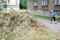 Technické služby si při odklízení kusů dřevin udělaly na volném prostranství hromádky z větví, které odklidí později, i ty jsou některým trnem v oku.