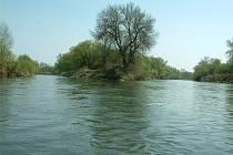 Řeka Odra v Bohumíně. Soutok s Olší.