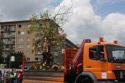 Květinové korzo slavnosti Havířov v květech 2015.