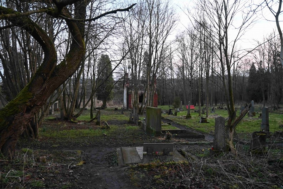 Fotoprocházka evangelickým hřbitovem v Karviné-Dolech.