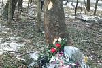 Místo tragické dopravní nehody BMW na Lazecké ulici v Orlové.