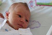 Terezka Dobišová se narodila 5. března mamince Gabriele Dobišové z Karviné. Po narození holčička vážila 3950 g a měřila 50 cm.