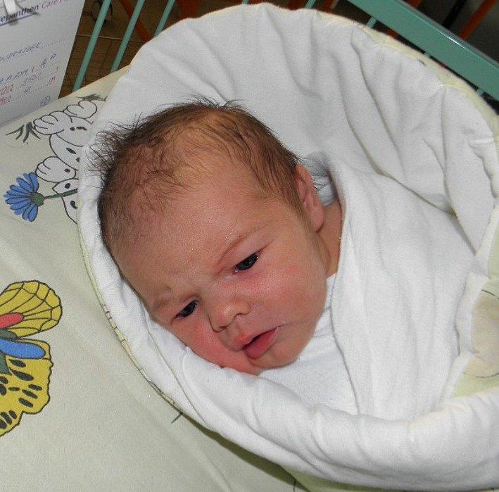 Paní Daria Ondraszek z Českého Těšína 19. listopadu porodila dcerku Nelinku Ondraszek. Po porodu dítě vážilo 3520 g a měřilo 48 cm.