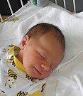 Adámek Miklar Cieśla se narodil 3. srpna paní Violetě Miklar Cieśla z Karviné. Po porodu chlapeček vážil 3770 g a měřil 51 cm.