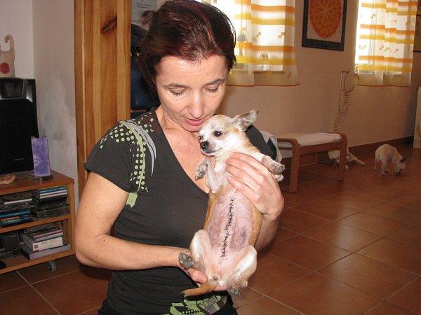 Andrea Dunová se zachráněnou čivavou.