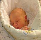 Šimonek Smolík se narodil 24. prosince paní Kateřině Zacharové z Chotěbuze. Po porodu chlapeček vážil 2920 g a měřil 49 cm.
