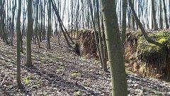 Svah doubravského kopce se stále více sesouvá. Obec proto uzavřela komunikaci, která se pod horninovým masivem nachází.