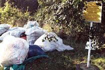 Ekologické myšlení některým lidem evidentně chybí. Jen v Karviné se v posledních dnech objevila další černá skládka.