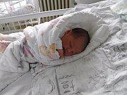 Noemi Pužová se narodila 17. října mamince Katrin Pužové z Orlové. Porodní váha holčičky byla 3000 g a míra 48 cm.