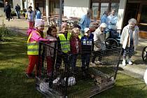 Seniorům v domově zpestřila den zvířata.