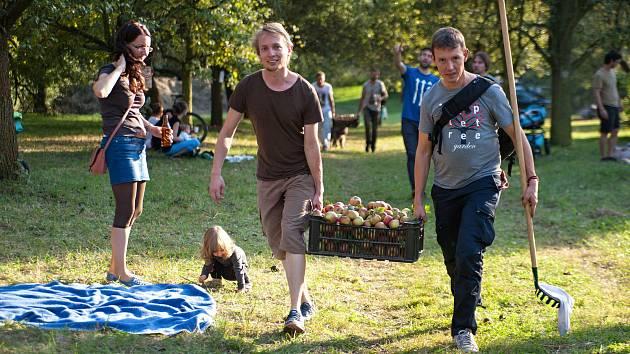 Míst, na kterých se dají beztrestně sbírat rostoucí plody, jsou po Česku desetitisíce.