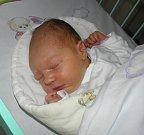 Agátka se narodila 11. července paní Silvii Kalusové z Opavy. Po narození holčička vážila 3920 g a měřila 51 cm.