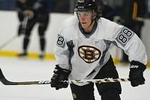 David Pastrňák, hráč Boston Bruins.