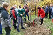 Školáci ze ZŠ Žákovská v Havířově společně s učiteli vysadili pamětní lípu.