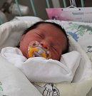 Nela Ferková se narodila 14. února. Měřila 48 cm, vážila 3100 g.