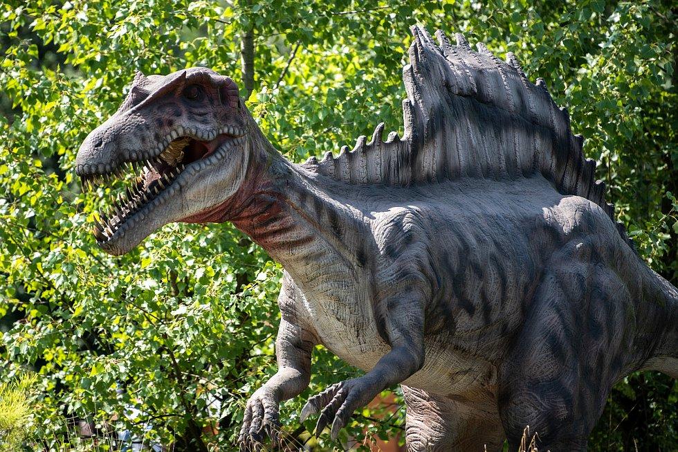 Největší DinoPark v republice se nachází v Doubravě.