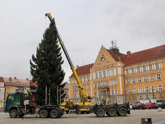 Kácení a stavění vánočního stromu v Českém Těšíně.