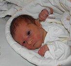 Mamince Nikole Kovaříkové z Karviné se 26. ledna narodila dcerka Sára. Po narození holčička vážila 2300 g a měřilo 44 cm.