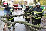 Vyvrácený strom v ulici U Stromovky rozřezali dobrovolní hasiči.