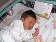 Natálie Anna Harvotová se narodila 17. listopadu mamince Kateřině Harvotové z Dolní Lutyně. Po porodu holčička vážila 2800 g a měřila 48 cm.