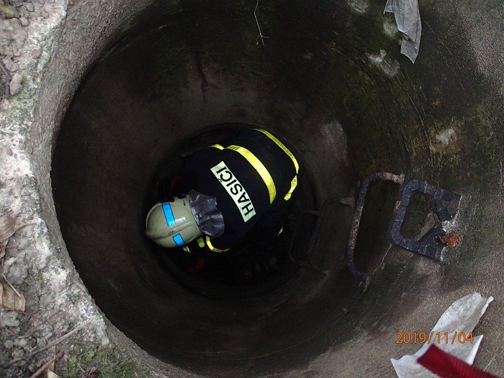 Profesionální hasiči pomáhali srnce uvízlé v úzké šachtici. Podařilo se jim ji vytáhnout nezraněnou.