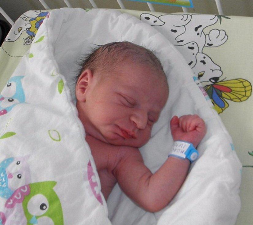 Milanek Slepčík se narodil 20. dubna mamince Sabině Slepčíkové z Karviné. Po porodu dítě vážilo 2870 g a měřilo 48 cm.