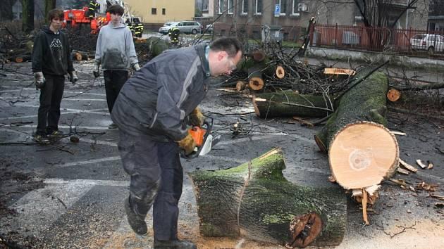 Kácení stromů na nábřeží mezi mosty Svobody a Přátelství v Českém Těšíně.