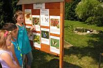 Děti si prohlížejí naučný panel na Živé zahradě své školy.
