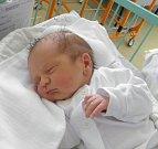 Kubíček se narodil 2. července paní Kateřině Sikenkové z Karviné. Po porodu dítě vážilo 3730 g a měřilo 50 cm.