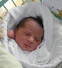 Leon Ferko se narodil 17. ledna mamince Andree Ferkové z Karviné. Po porodu dítě vážilo 3450 g a měřilo 48 cm.