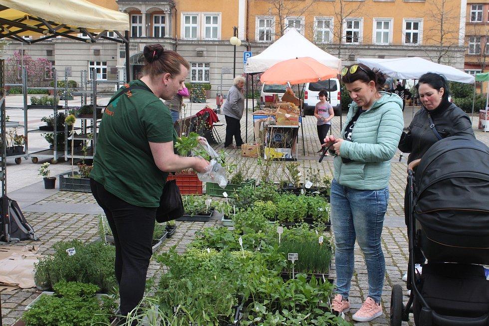 Také v Českém Těšíně se dočkali. Po dlouhé době se náměstí ČSA ve čtvrtek konal Slezský rynek. Duben 2021.