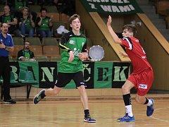 Mladí házenkáři zvládli domácí zápasy.