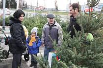 Prodejce Michal Klačko chystá stromek pro jedny z orlovských zájemců.