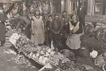 V Okresní archivu v Karviné bude od čtvrtka 19. září k vidění výstava nazvaná Sklizeň ohrožena!