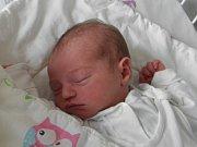 Gabrielka Kamešová se narodila 20. března paní Nikole Kamešové z Orlové. Po porodu dítě vážilo 3010 g a měřilo 47 cm.