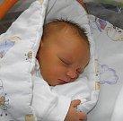 Petr Danel se narodil 1. prosince paní Petře Danelové z Havířova. Porodní váha chlapečka byla 3790 g a míra 50 cm.