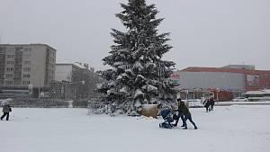 Sněhová nadílka 8. 1. 2019
