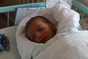 Chlapeček Jiřík Plachetka se narodil 1. března mamince Sáře Wilczynské z Karviné. Po porodu vážil 3050 g a měřil 50 cm.
